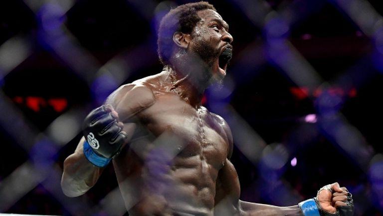 Горилата убиец дебютира с нокаут в средна категория на UFC 230 (видео)