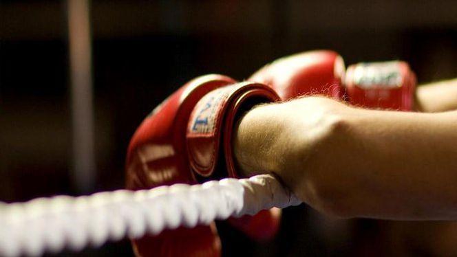 Огромен интерес към Държавното по бокс за мъже