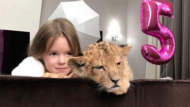 Съотборник на Попето нае лъвче за ЧРД на дъщеря си