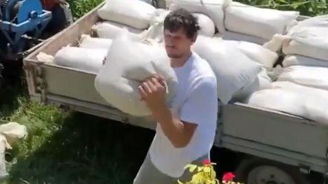 Центърът на Далас Маверикс Бобан Марянович помага за събирането на реколтата в родния си дом