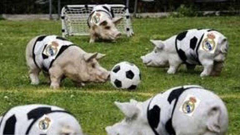Стоичков не спира с подигравките към Реал Мадрид (снимка)